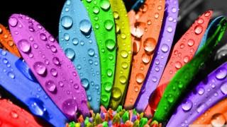 ফটোশপ টিউটোরিয়াল পর্ব-১৮ (Color Balance)